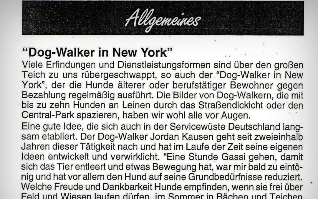 DOG-WALKER IN NEW YORK